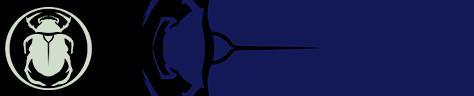 Scarab Heart Emblem